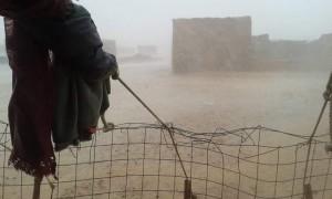 Llueve en el Sahara