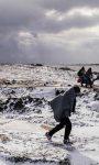 La Red de Coordinadoras Autonómicas de ONGD insta al Gobierno de España a buscar una solución a la situación de la población refugiada en Europa