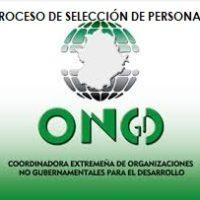 OFERTA DE EMPLEO TÉCNICA/O COORDINACIÓN Y EJECUCIÓN DE PROYECTOS CONGDEX