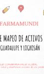 EXPERIENCIA DE MAPEO COLABORATIVO PARA LA PROMOCION DE COMUNIDADES ACTIVAS POR LA SALUD / FARMAMUNDI